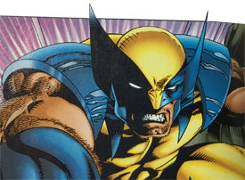 wolverine-cropped-275